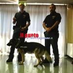 cane-polizia