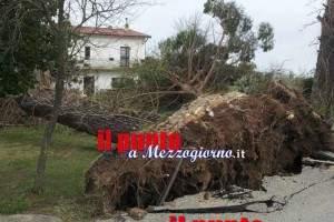 vento-forte-cassinate-07
