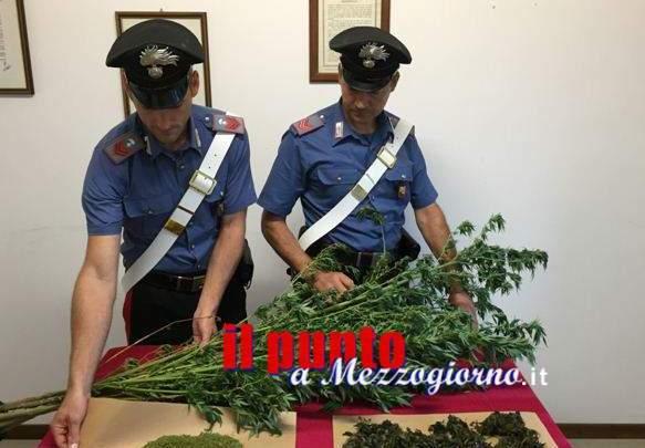 Droga fatta in casa a Santi Cosma, arrestato 50enne