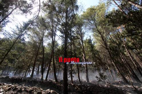 incendio-mignano-monte-rotondo-12