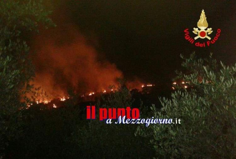 incendi bosco