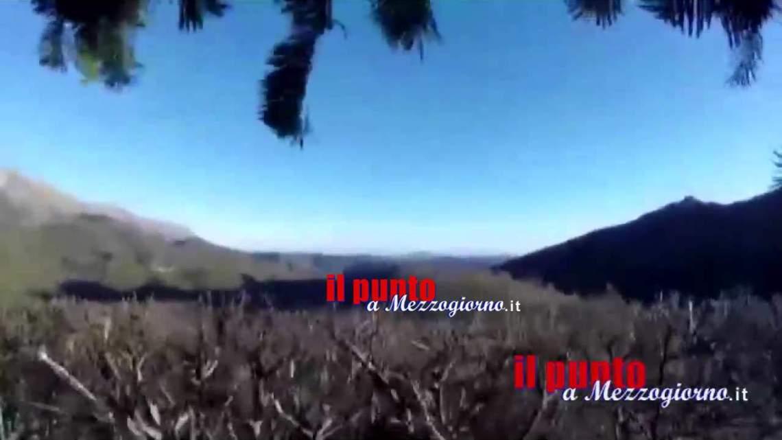 Terremoto, cacciatori sorpresi sugli alberi – IL VIDEO