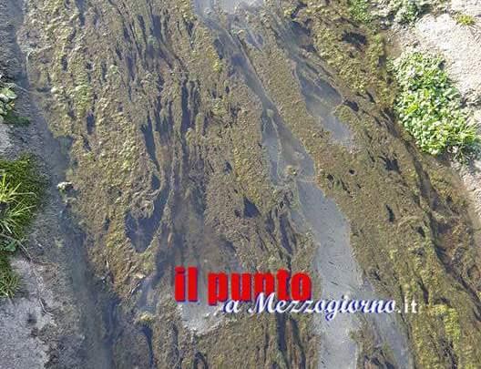 Vascone di Piumarola, ancora una sostanza misteriosa nell'acqua