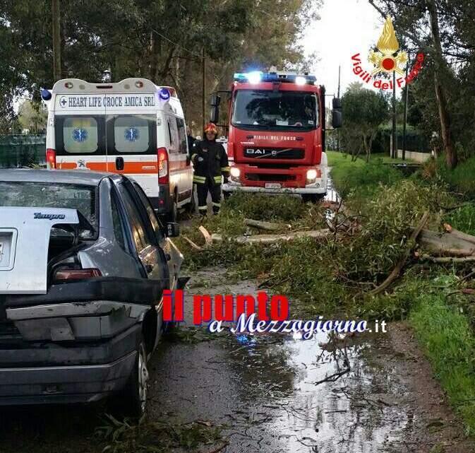Danni da vento,  albero su auto a Terracina e cornicioni pericolanti ad Aprilia