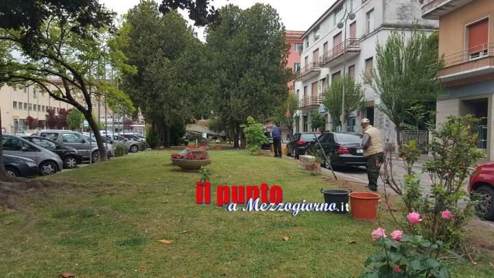 Partiti nelle aree verdi di piazza De Gasperi i primi lavori del progetto adotta un giardino