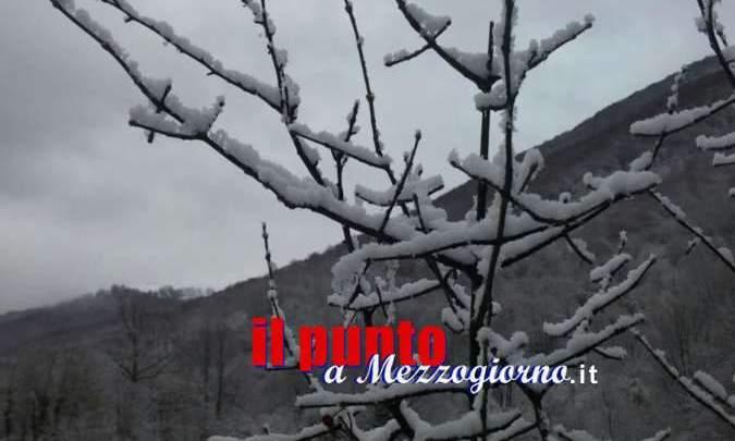 PUGLIA. Neve di marzo nel silenzio dell'emergenza Covid-19