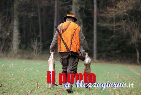 L'inno all'ammazzamento: la caccia