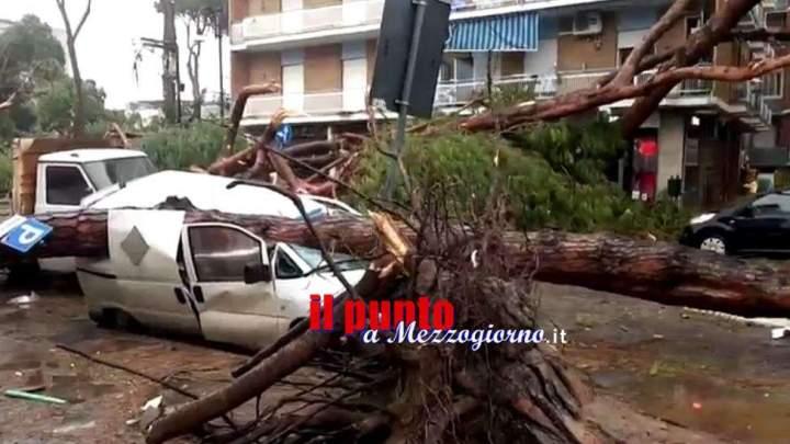 Terracina, un morto ed un ferito per la caduta di alberi sulle auto