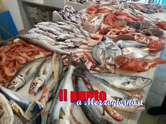 Controlli alle pescherie a Frosinone, commerciante aggredisce i carabinieri Forestali e viene arrestato