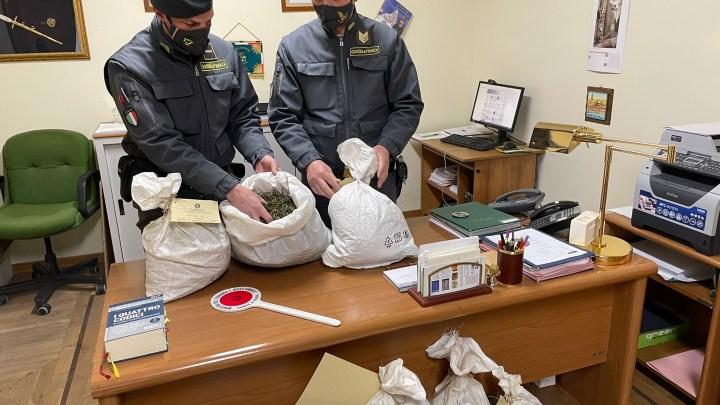 Sequestrati a Fiuggi 188 chili di marijuana, una persona denunciata