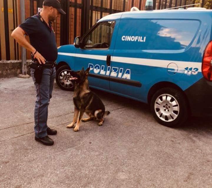 Frosinone – La Polizia di Stato intensifica i servizi di controllo del territorio