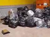 Una tonnellata e mezza di Marijuana sequestrata a Cisterna di Latina