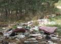 inquinamento-SILA-ph.gico