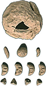 BollaSumera02