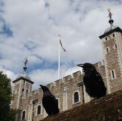 La Gran Bretagna trema per il presagio lugubre: scompare Merlina