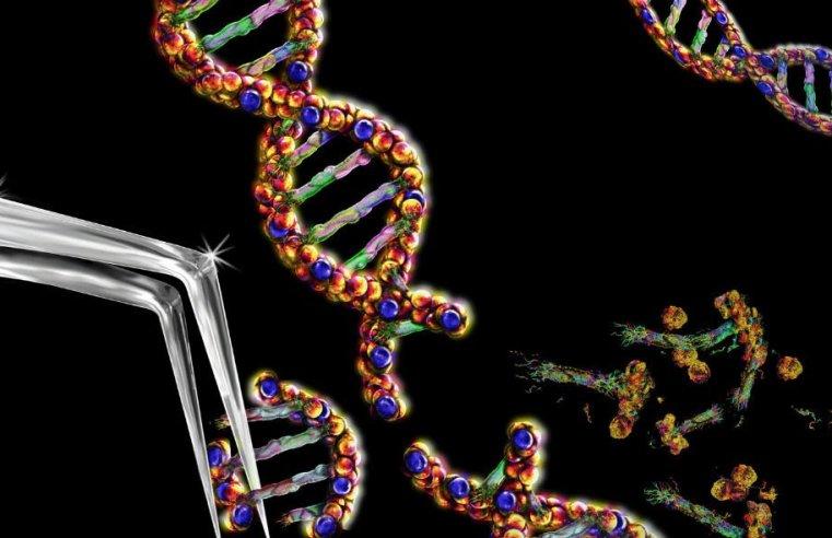 CRISPR come possibile cura contro l'Hiv: Laser-art e CRISPR potrebbero debellare definitivamente il virus