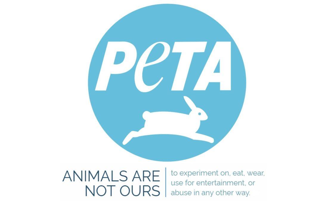 PETA e sperimentazione degli antidepressivi: perché i test sugli animali sono (purtroppo) necessari