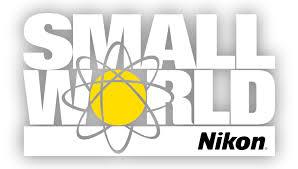 Nikon's Small World Photomicrography Competition: quando la scienza diventa arte attraverso il mondo della microscopia