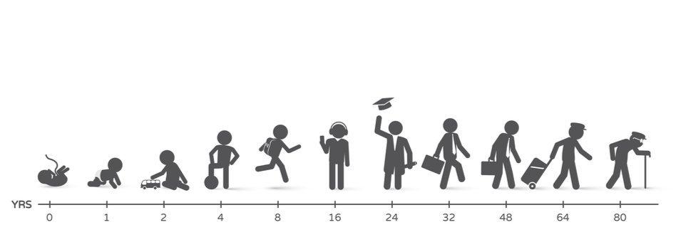 Topi con cromosomi anti-invecchiamento: più sani e longevi senza modifiche genetiche