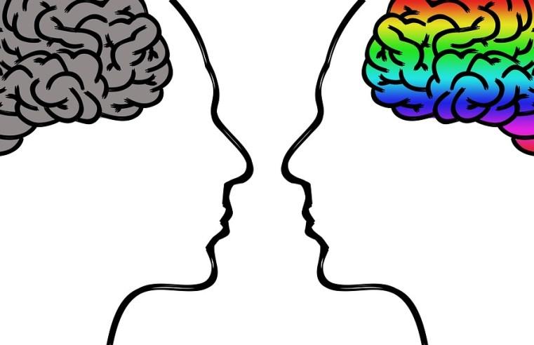 Combattere ignoranza e pregiudizi etnici con il buon senso: Mattarella lo ha utilizzato?