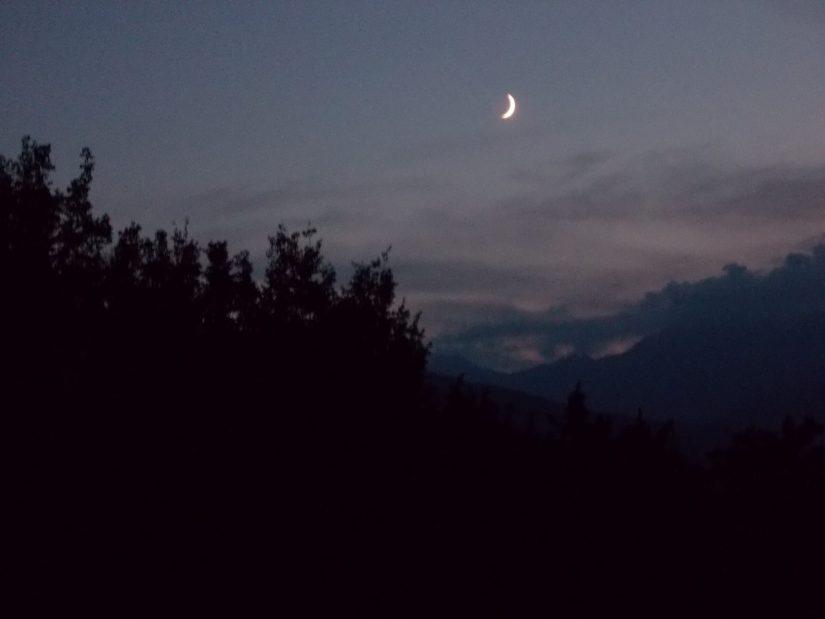 Leopardi e Sparks ci ricordano di guardare la luna che racconta di bianchi sogni