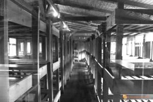 Camere Sachsenhausen