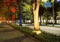 Paseo de la Reforma DF