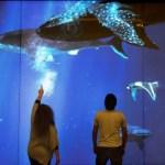 Se inaugura acuario interactivo en Lima, Perú