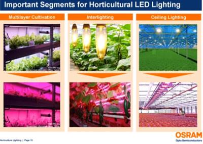 LEDS-Osram-horticultura