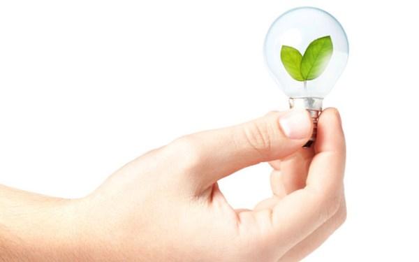 fide-verde-sustentabilidad-y-ahorro