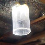 Luciérnaga, una alternativa ecológica de luz para comunidades