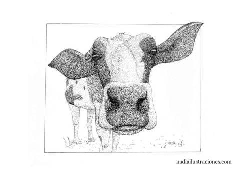 nadia-batalla-ilustraciones-08