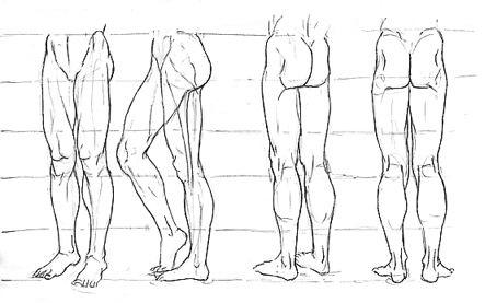 Cómo dibujar los músculos? (Manga) | IlustraIdeas