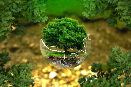 natura, inquinamento