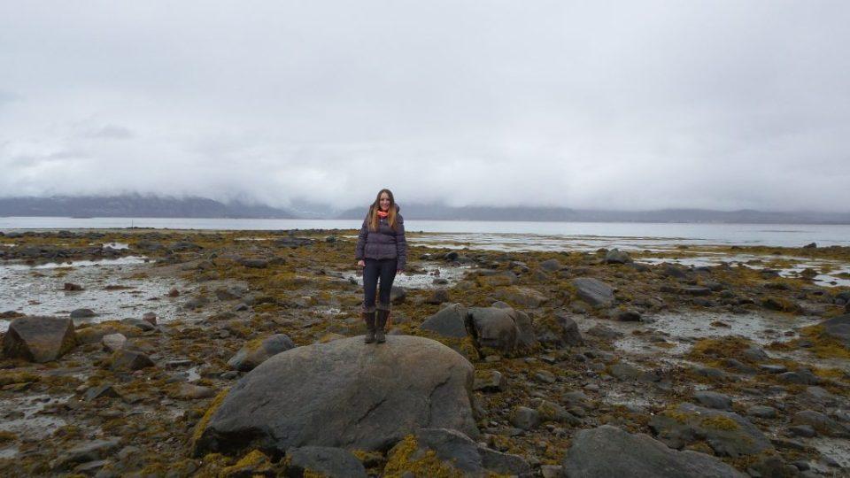 Lodingen, isole lofoten