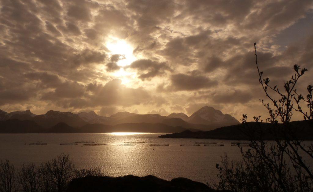 sole di mezzanotte isole lofoten