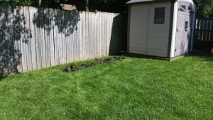 Grass removed for planting
