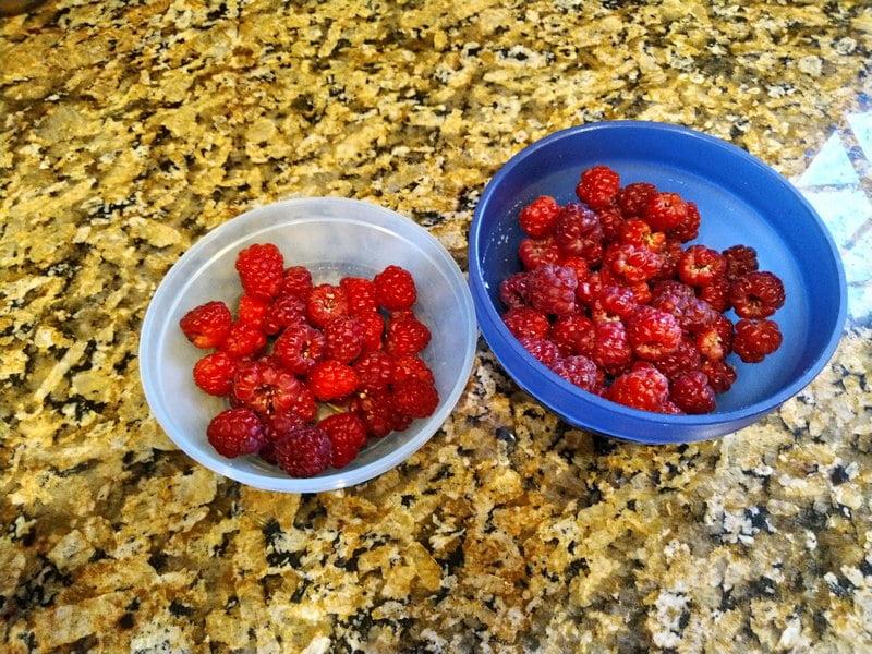6/1/19 - Joan J raspberries.