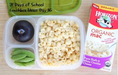 Almuerzos saludables para niñ@s (7)