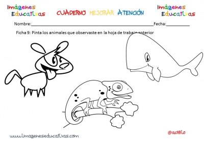 Cuadernillo Fichas Para Trabajar La Preescritura Nivel Inicial 2 3