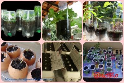 Huerto escolar botellas plastico y otros materiales reciclados Collage