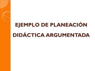 Etapa 4 como elaborar una planeación didáctica argumentada (4)