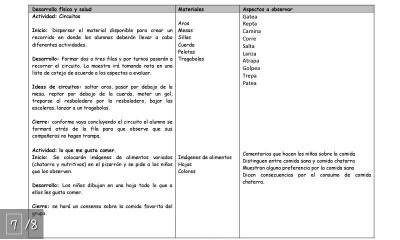 Plan de Diagnostico Ciclo 2015 – 2016 (8)