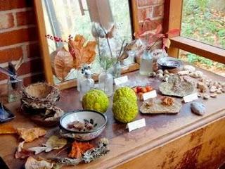 Rincón del otoño(5)