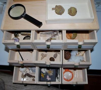 Montessori área de ciencias y naturaleza 3