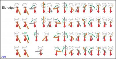Nudos de Corbata (6)