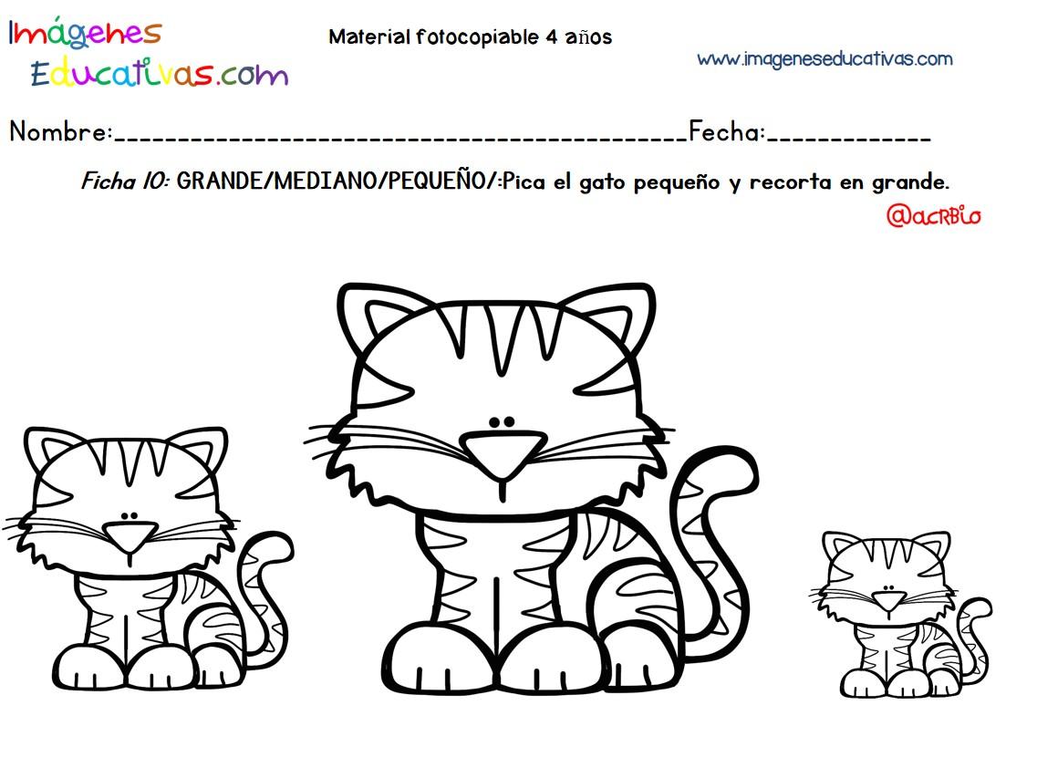 Imagenes De Pequeno Mediano Y Grande Para Colorear Apanageetcom