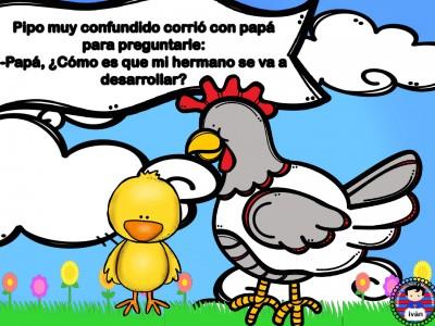 El-pollito-Pipo.-011