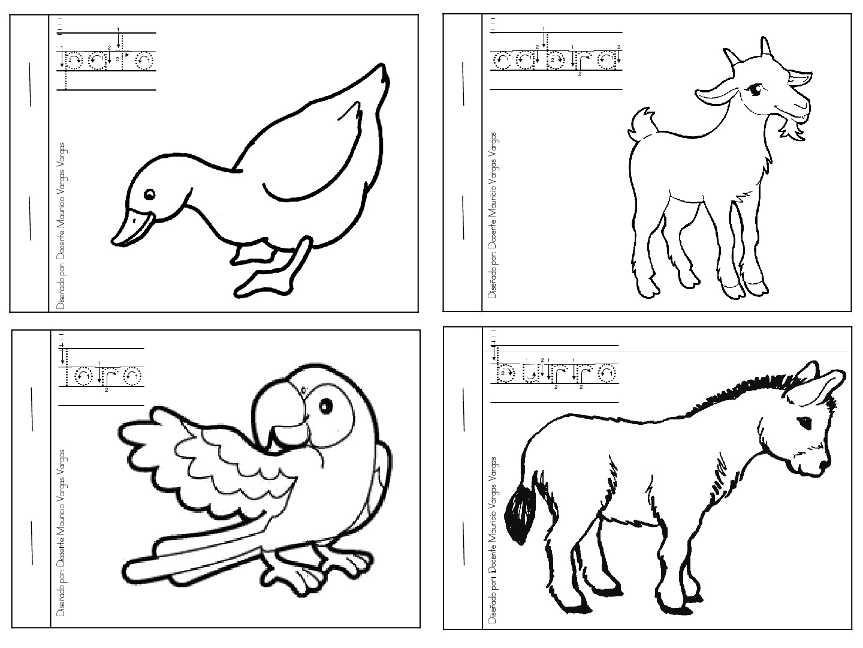 Mi libro de colorear de animales domesticos (6) - Imagenes Educativas