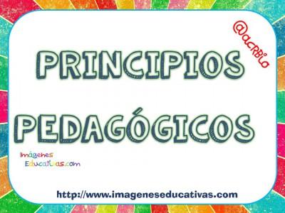 PRINCIPIOS PEDAGÓGICOS (1)